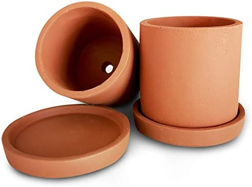 Mini Terracotta Succulent Plant Pot with Drainage and Saucer, Best for Premium Indoor Outdoor Home D cor, Eco-Friendly Concrete Cement Planter, 3 Inch Cactus Planter Pot, Set of 2, Makes A Great Gift
