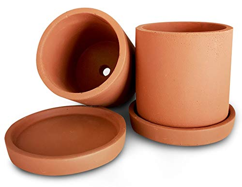 - Mini Terracotta Succulent Plant Pot with Drainage and Saucer, Best for Premium Indoor Outdoor Home Décor, Eco-Friendly Concrete Cement Planter, 3 Inch Cactus Planter Pot, Set of 2, Makes A Great Gift