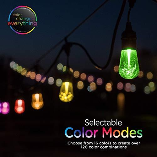 Enbrighten 37790 Vintage Seasons LED Warm White & Color Changing Café String Lights, Black, 48ft, 24 Premium Impact Resistant Lifetime Bulbs, Wireless, Weatherproof, Indoor/Outdoor, 48 ft, by Enbrighten (Image #1)
