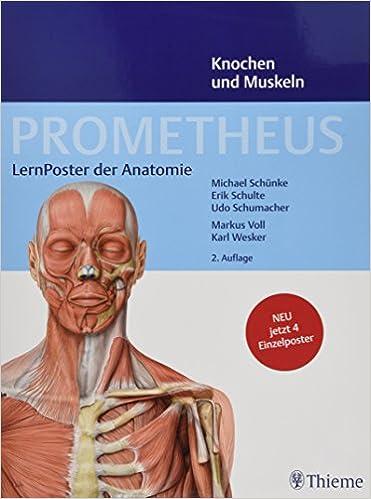 PROMETHEUS LernPoster der Anatomie, Knochen und Muskeln: Amazon.de ...