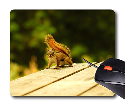 SOKAD Mouse Mat Personalized - Give Me Till The Count Of Three - Rectangle Non-Slip Rubber Mousepad Gaming Mouse (Mat Till Halloween)