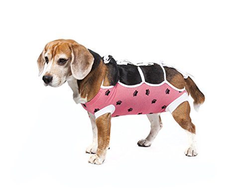 E-Collar Alternative for Cats and Dogs Designed to Protect Abdominal Wounds and Skin Disease. Award Winning and Patented Design Recommended by Veterinarians Worldwide. (Small, Pink)