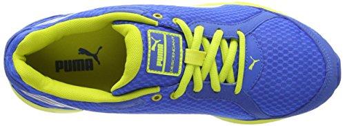 PumaDescendant - Zapatillas de running Niños Royal/Plateado (Royal/Sulphur Spring/Silver)
