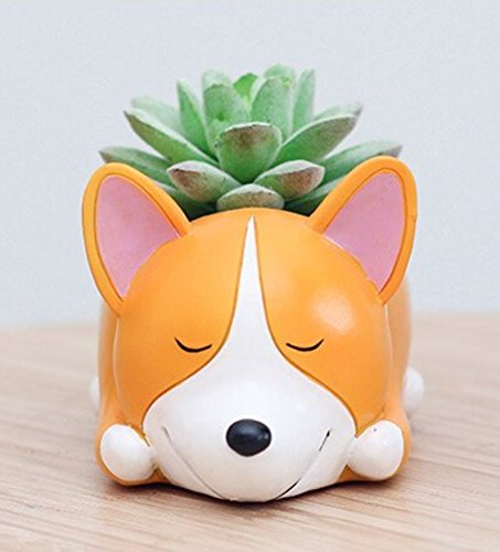 - Aircoo Welsh Corgi Dog Close Eye Planter Pot For Decorative Succulents Cacti Flowers Plants, DIY Fairy Garden Container With Miniature House