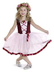 Creative Education Girls Tulle Dress with Ribbon & Roses, Medium, Red/Pink