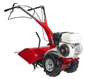 Eurosystems RTT2 motor Honda motocultor, fabricado en Italia: Amazon.es: Jardín