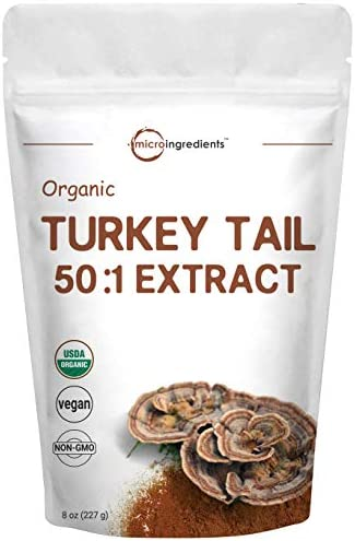 Maximum Strength Organic Turkey Mushroom product image