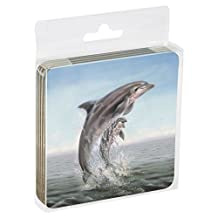 Tree-Free Greetings Set Of 4 Cork-Backed Coasters, 3.75x3.75-Inch, Dolphin Leaping Themed Wildlife Art (52920)
