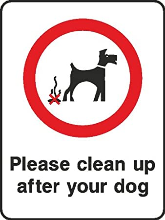 Best Dog Food To Reduce Pooping Uk