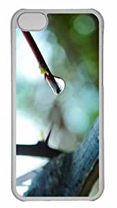 Customized iphone 5C PC Transparent Case - The Little Things Arent Always So Little Personalized Cover