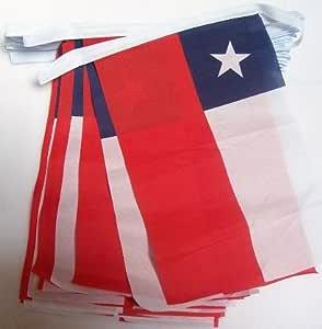 AZ FLAG Guirnalda 4 Metros 20 Banderas de Chile 15x10cm - Bandera CHILENA 10 x 15 cm - BANDERINES: Amazon.es: Hogar