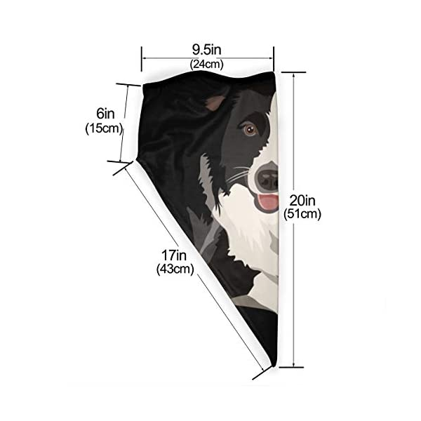 Border Collie Neck Gaiter Warmer Windproof Face Mask Scarf Outdoor Sports Mask 2