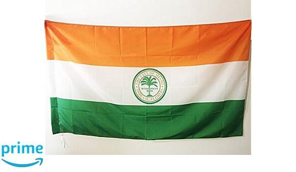 AZ FLAG Bandera de la Ciudad DE Miami 150x90cm para Palo ...