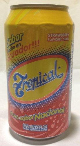 Amazoncom Tropical Ecuadorian Strawberry Soda 12 Oz 12 Pack