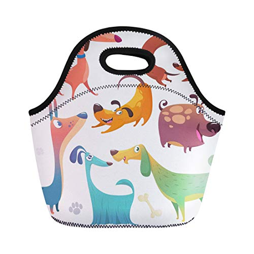 Semtomn Neoprene Lunch Tote Bag Cartoon Dogs of Retriever Dachshund Terrier Pitbull Spaniel Bulldog Reusable Cooler Bags Insulated Thermal Picnic Handbag for Travel,School,Outdoors, Work