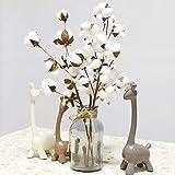 Gotian 21inch Naturally Dried Cotton Stems Flower, Farmhouse Style Artificial Flower Filler Floral Decor 3Pcs