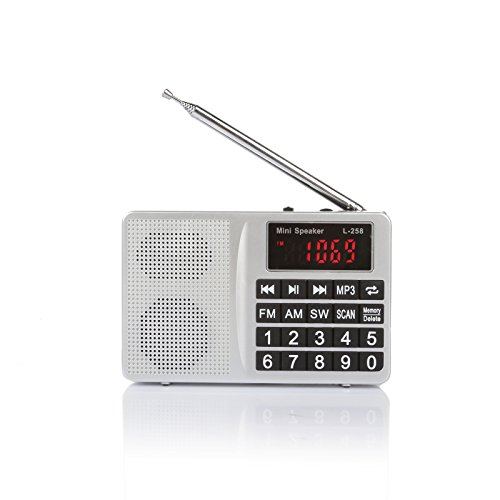 Portable Radio With Rechargeable Battery - 7