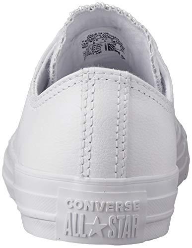 Converse-Chuck-Taylor-All-Star-2018-Seasonal-Low-Top-Sneaker