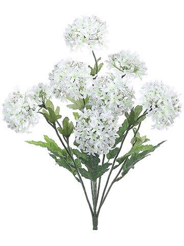 18-Snowball-Bush-x9-White-pack-of-12