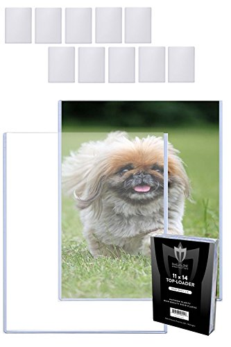 11 Lithograph ((10) 11x14 MAX Pro Photo / Lithograph / Print Hard Rigid Ultra Clear Toploader Holder - 10 Ct)