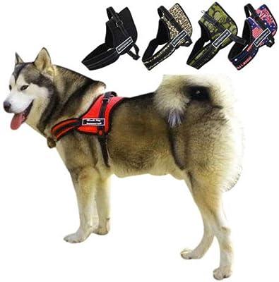 FidgetGear - Arnés de Nailon para Perro sin tirones, para Labrador ...