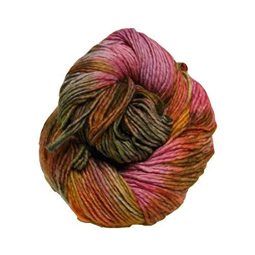 Malabrigo Merino Yarn - Malabrigo Merino Worsted Multi Yarn 621 Deja Vu