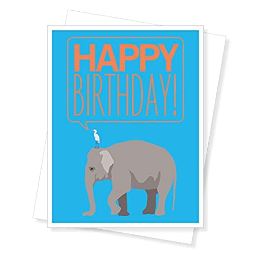 Elephant Birthday Card Amazon