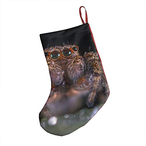 DIDIDI Halloween Macro Brown Jumping Spider Christmas Stockings Xmas Socks Ornamentthemed 18 Inch XL Large Bulk Big Jumbo Giant 20 Opaque Embellishments Childs Girl Boy -