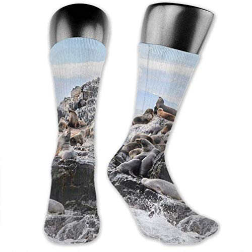 WCHUNMU Lions On The Rock High Ankle Stocking Breathable Hiking Sock Classics Compression Sock for Men Women Teens Kids Boys Girls Unisex