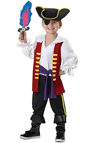 California Costumes The Wiggles Captain Feathersword Costume, 3-4 by California (The Wiggles Captain Feathersword)