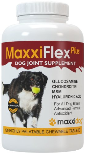 Dog Joint Supplement - Glucosamine, Chondroitin, MSM, Hyaluronic Acid, Devils Claw, Bromelain, Turmeric - 120 Liver Flavored Tablets - MaxxiFlex Plus for Maximum Pet Joint Health and Improved Mobility