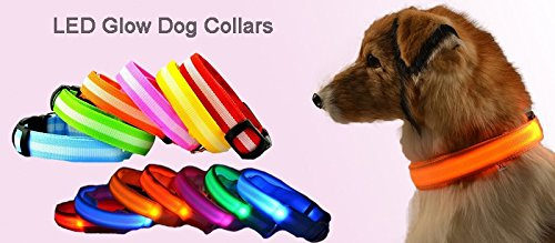 Night Safety LED Dogs Collar,Nylon Lights Flashing Glow In Dark Electric Pet Coolars,7Colors Pet Supplies Dog Cat Leash (1PCS. Random Color)