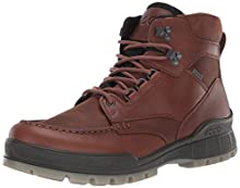 ECCO Men's Track 25 High GORE-TEX waterproof outdoor hiking Boot, Bison/Bison, 43 M EU (9-9.5 US)
