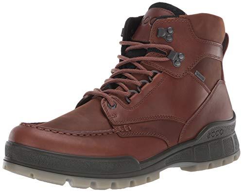 ECCO Men's Track 25 High GORE-TEX waterproof outdoor hiking Boot, Bison/Bison, 44 M EU (10-10.5 US)