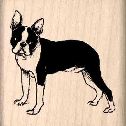 Boston Terrier Rubber Stamp - 1-1/2 inches x 1-1/2 inches