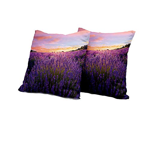 Chaise Lounge Cushion Cover Lavender,Rural Meadow in Full Blossom Summertime Lively Nature European Land,Violet Coral Light Blue Cushion Cover Set of 2 18x18 INCH 2pcs