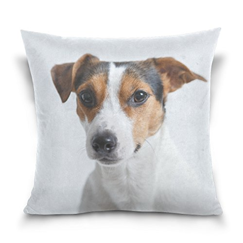 Hokkien Blue Viper Jack Russell Dog Decorative Square Throw Pillow Case Cushion Cover for Sofa Bedroom Car Double-Sided Design 20 x 20 inch
