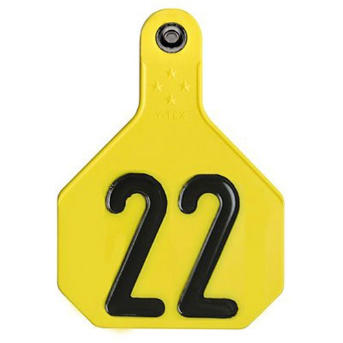 Y-TEX CORPORATION Large Yellow Tag (25 Pack)
