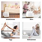 GXDiffuser-Alexa-Luftbefeuchter-Ultraschall-Aroma-Diffuser300ML-Smart-WIFI-Vernebler-Raumbefeuchter-Duftlampe-le-DiffusorKompatibel-mit-Alexa-Google-Home14-LED-Farben-fr-RaumBroYogaSpausw