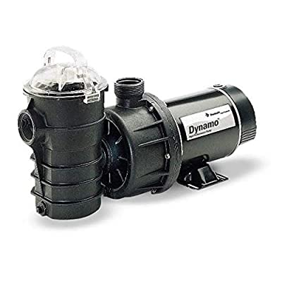 Pentair DYNII-NI-1-1/2 HP Dynamo Single Speed Aboveground Pool Pump with Cord, 1-1/2 HP : Swimming Pool Water Pumps : Garden & Outdoor