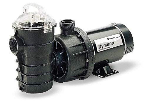 Pentair DYNII-NI-1-12 HP Dynamo