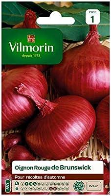 bolsa de semillas Cebolla roja Vilmorin: Amazon.es: Jardín