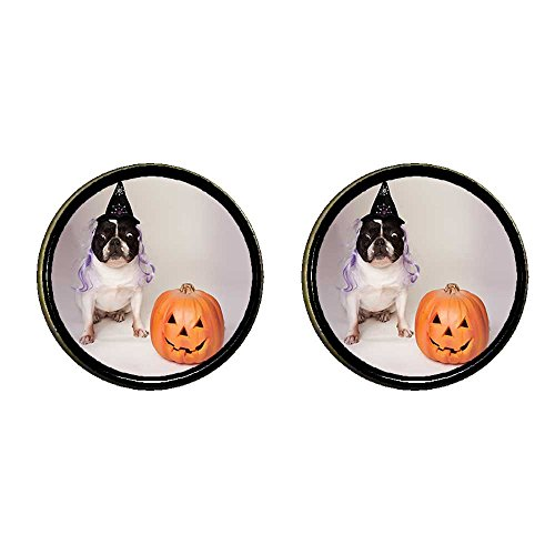 GiftJewelryShop Bronze Retro Style bulldog witch costume Halloween pumpkin Photo Clip On Earrings (Clip On Dog Ears Costume)