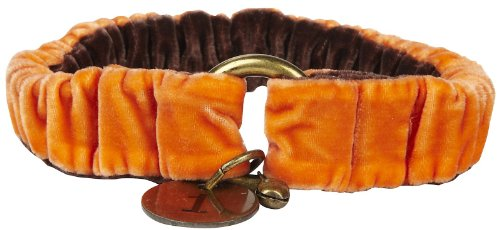 The Life of Ryley Velvet Collar - Orange - Large