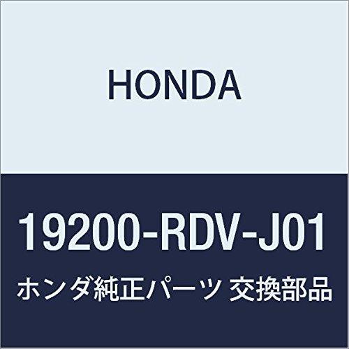 Genuine Honda 19200-RDV-J01 Water Pump