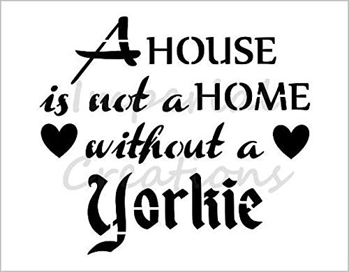 YORKIE Yorkshire Terrier House Is Not A Home Dog Breed 8.5