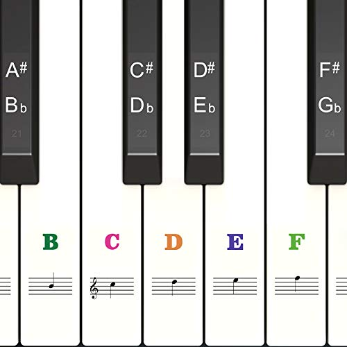Color Piano Stickers for Keys 88/61/54/49, Transparent & Removable Keyboards Stickers, Perfect for the Beginners