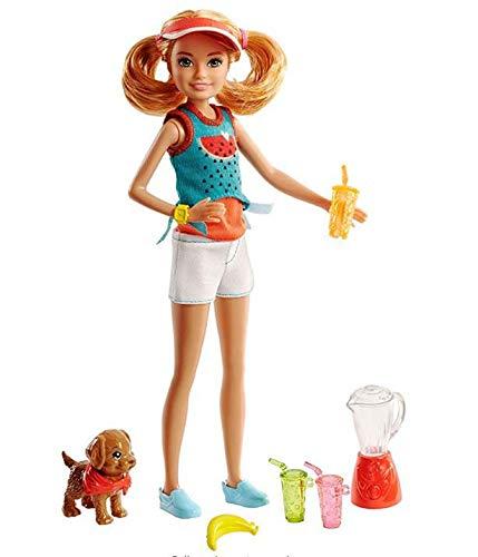 Conjunto Barbie Boneca Stacie Criando Sucos com Filhotinho - FHP61 - Mattel