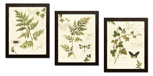 Framed Brown Print - Gango Home Decor Classic Green and Brown Botanical Leaves, Dragonflies and Butterflies Set by Lisa Audit; Three 8x10in Brown Framed Prints
