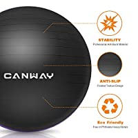 Canway Exercise Ball - Extra Thick & Slip Resistant Workout Ball, Professional Grade 2200lbs Anti-Burst Stability Ball, 65CM Black Yoga Ball with Hand Pump by CANWAY